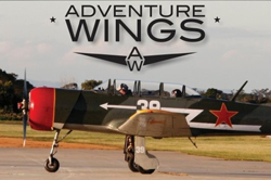 adventure-wings
